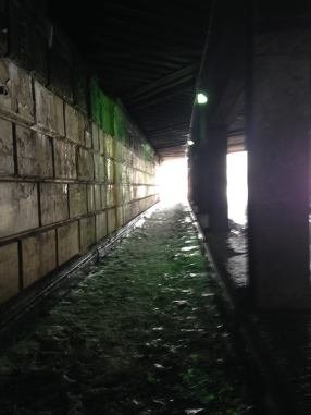The underpass beneath the CSX Tracks. Yes. This is literally the passage ON Euclid Avenue between UC and the Euclid/East 120th Red Line station, which is above this