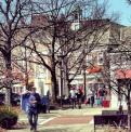 Shaker Square